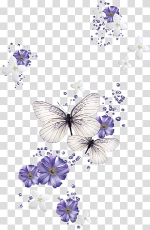 butterfly flowers PNG