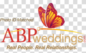 ABP News Marriage Wedding ABP Group Bride, wedding PNG clipart