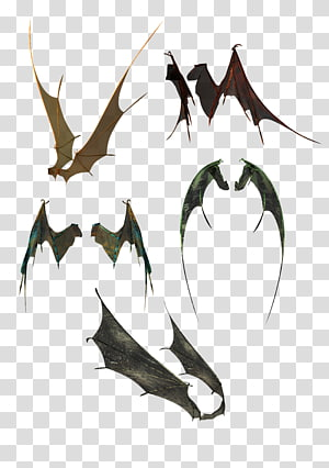 Bat Wing , A variety of positions bat wings PNG clipart