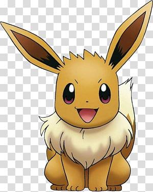 Pokemon Eevee illustration, Pokémon GO Pokémon X and Y Pikachu Eevee, Pokemon PNG