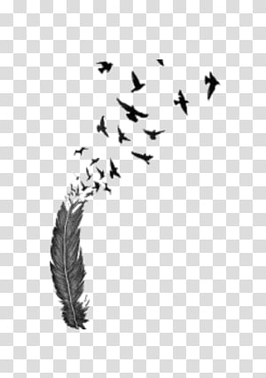 Bird flight Feather Tattoo , Bird PNG