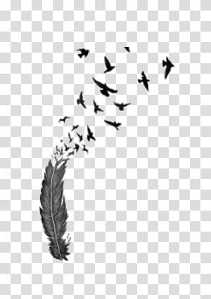 Bird flight Feather Tattoo , Bird PNG clipart