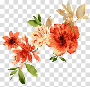 watercolor flower PNG