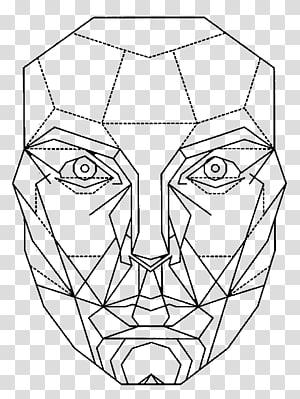 Vitruvian Man Golden ratio Face Mathematics, Face PNG clipart