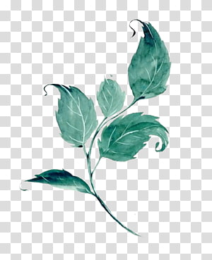 watercolor leaves PNG clipart