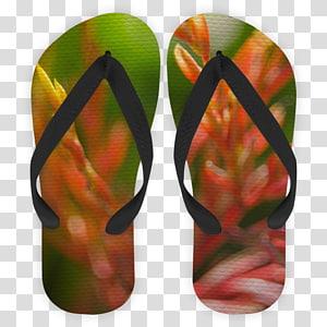 Flip-flops Shoe Leaf, Peacocks PNG clipart