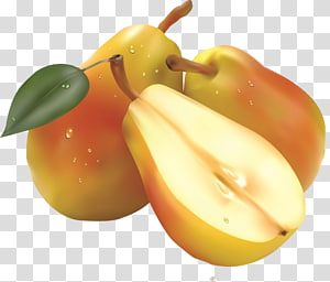 Fruit salad Pear , Realistic pear fruit PNG
