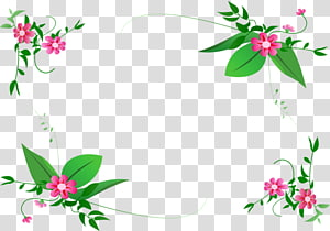Floral design Border Flowers , flower PNG