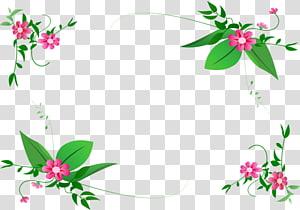 Floral design Border Flowers , flower PNG clipart