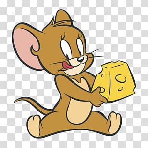 Jerry Mouse Tom Cat Nibbles Tom and Jerry Cartoon, tom and jerry PNG clipart
