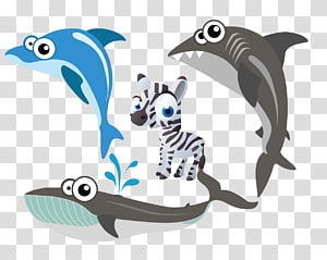 Dolphin Shark Whale Porpoise Marine biology, zebra shark whale dolphin PNG clipart