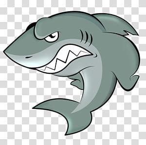 gray shark , Shark Cartoon , sharks PNG clipart
