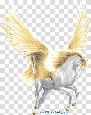 Howrse Medusa Horse Pegasus Perseus, pegasus PNG